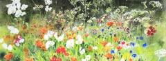 Tutti Frutti Garden. Jenny Matthews