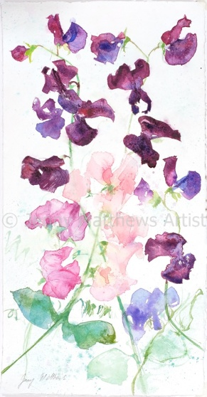 Sweet Peas, 41 x 21cm, watercolour on paper, framed price £735 SOLD