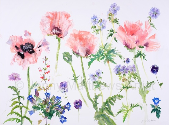 Candyfloss Poppies, 76 x 56cm, watercolour on paper, framed price £1,850